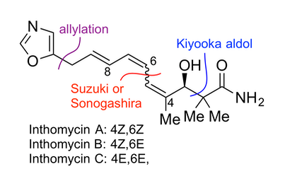 eb5d5e1e0c9 14 06 2018 New publication in Tetrahedron on the total synthesis of the  avenaciolide family of natural products.